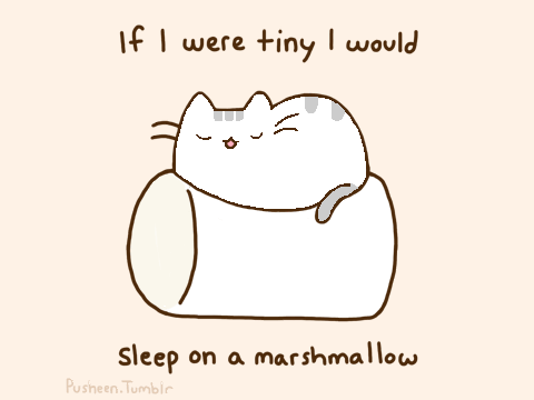Gallery For gt Pusheen Marshmallow